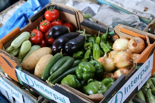 Interpal distributes fresh fruits and vegetables to Palestinian refugees