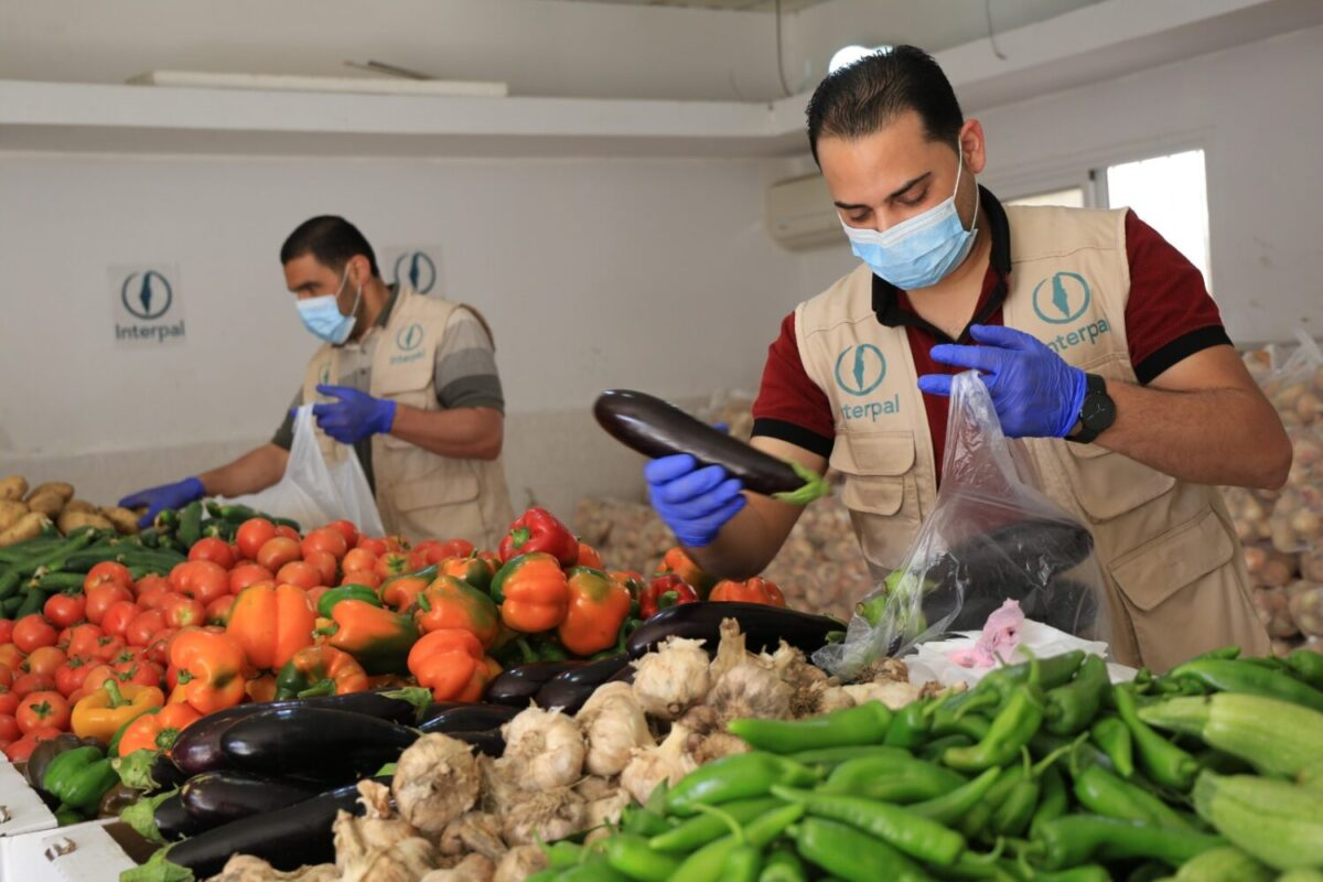 Providing fresh produce in Gaza to support food security and local farms